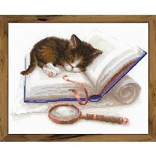 Tableau à broder 'chaton sur livre', 30 x 24 cm