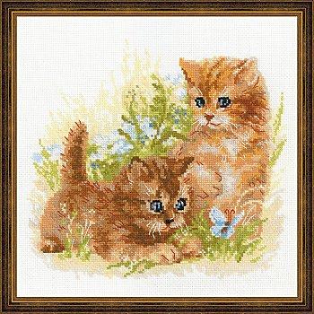 Tableau à broder '2 chatons', 25 x 25 cm