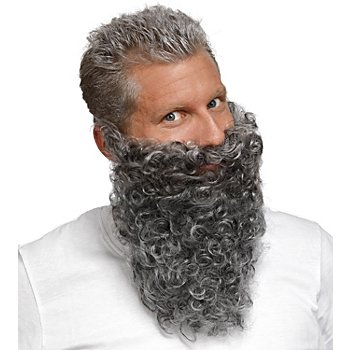 Barbe de nain, gris