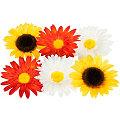 Têtes de fleurs, 10 cm Ø, 6 pièces