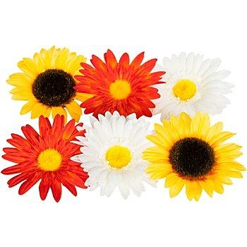 Blütenköpfe, 10 cm Ø, 6 Stück