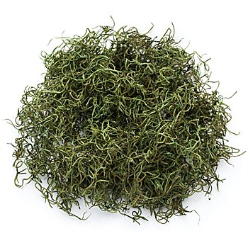 Dschungelgras, grün, 50 g