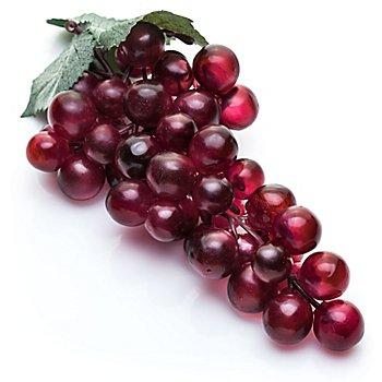 Weintrauben-Dolde, burgund
