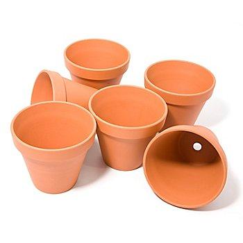 Pots en terre cuite, 10 cm de hauteur, 11 cm Ø, 6 pièces