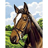 """Malen nach Zahlen mit Acrylfarben """"Pferd"""", 29 x 22 cm"""