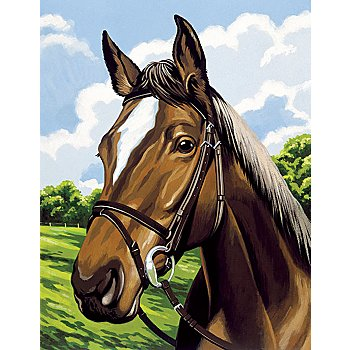 Malen nach Zahlen mit Acrylfarben 'Pferd', 29 x 22 cm