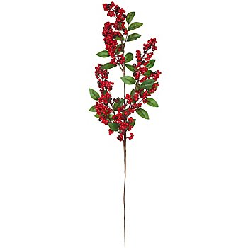 Traubenholunderbeeren-Zweig, 68 cm