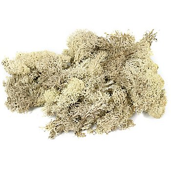 Islandmoos, natur, 250 g
