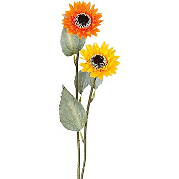 Sonnenblumen, gelb-orange, 60 cm, 2 Stück