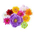 Blütenköpfe-Mix, 5–13 cm Ø, 10 Stück