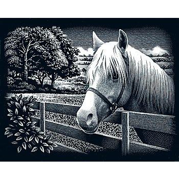 Kratzbild 'Pferd, Landschaft', 25 x 20 cm