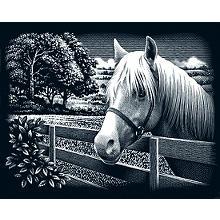 Kratzbild 'Pferd, Landschaft' 25 x 20 cm