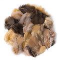 Echte Federn, braun-kaffee-ocker, 20 g = ca. 160–170 Federn
