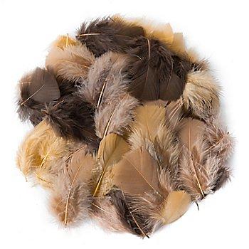 Plumes véritables, marron/café/ocre, 20 g = env. 160-170 plumes