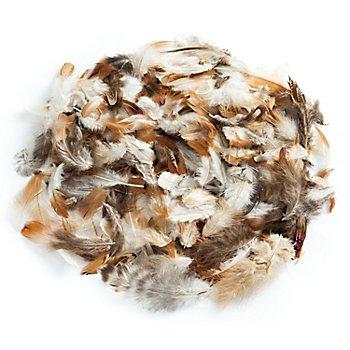 Echte Fasan- & Hühnerfedern Naturtöne, 15 g = ca. 360–380 Stück