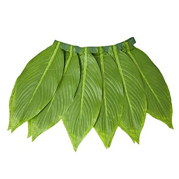 Palmblätter-Rock