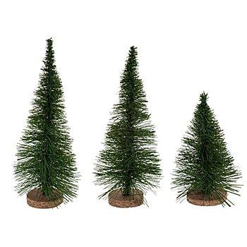 Tannen, 14 cm, 18 cm und 20 cm, 3 Stück