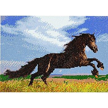 Diamantenstickerei-Set 'Pferd', 34 x 24 cm
