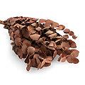 Echter Eukalyptus-Zweig, braun, 150 g