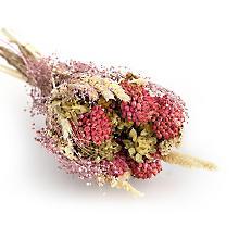 Bouquet de fleurs séchées, rose-crème