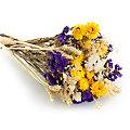 Trockenblumenbouquet, lila-gelb