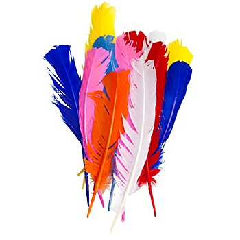 Plumes d'indiens, multicolore