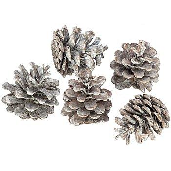 Kiefernzapfenmix, weiß-braun, 250 g