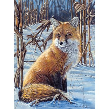 Malen nach Zahlen mit Acrylfarben, 'Fuchs', 23 x 30,5 cm