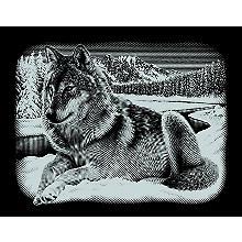 Kit image à gratter 'loup', 25 x 20 cm