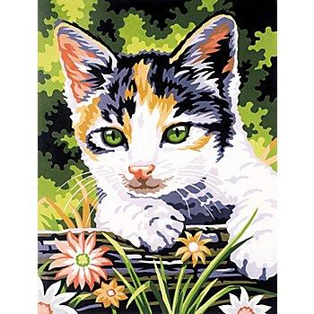 Malen nach Zahlen mit Acrylfarben 'Katze', 23 x 30,5 cm