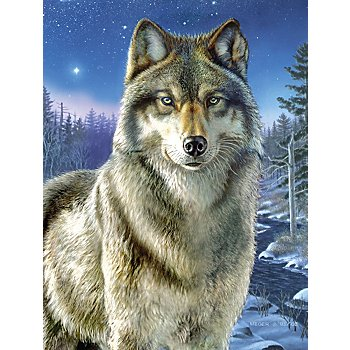 Malen nach Zahlen mit Acrylfarben, 'Wolf', 23 x 30,5 cm