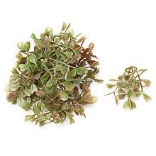 Mini-Buchszweige, 4,5 cm, 12 Stück