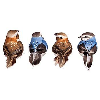 Federvögel mit Klammer, braun/blau, 4 Stück