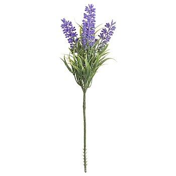 Lavendelbund, 25 cm, 2 Stück