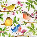 """Serviettes en papier """"oiseaux dans un arbre"""", 33 x 33 cm, 20 pièces"""