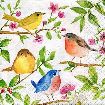Serviettes en papier 'oiseaux dans un arbre', 33 x 33 cm, 20 pièces