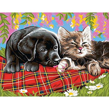 Malen nach Zahlen mit Acrylfarben 'Hund und Katze', 39 x 30 cm