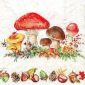 """Papierservietten """"Waldboden"""", 33 x 33 cm, 20 Stück"""