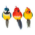 Perroquets avec plumes, 12 x 3 cm, 3 pièces