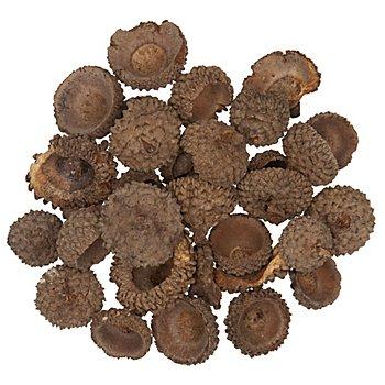 Echte Eichelhütchen, 250 g