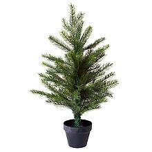 Tannenbaum, 60 cm, mit Topf