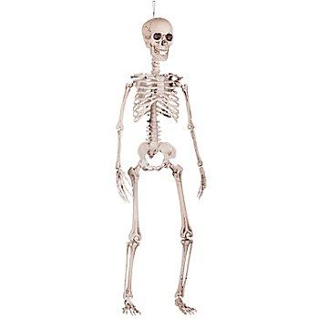 Deko Skelett, 90 cm