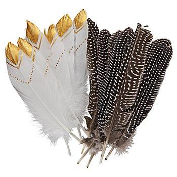 12er-Pack Indianer-Federn
